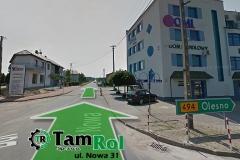 tamrol-street
